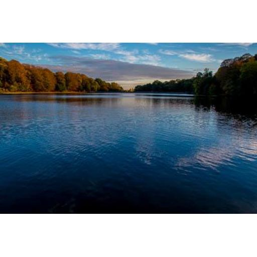 Roundhay Park Lake Autumn print