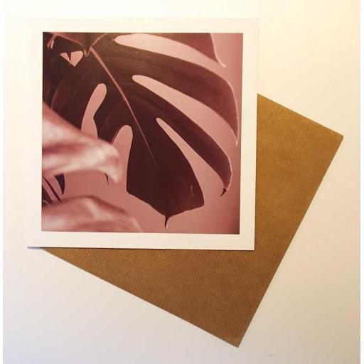 Monstera Pink art card