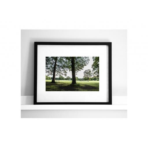 horsforth-trees-1.jpg