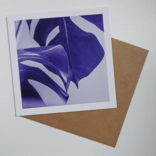 Monstera Plant purple art card