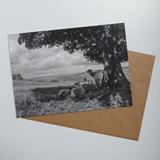 Ilkley Moor Art card