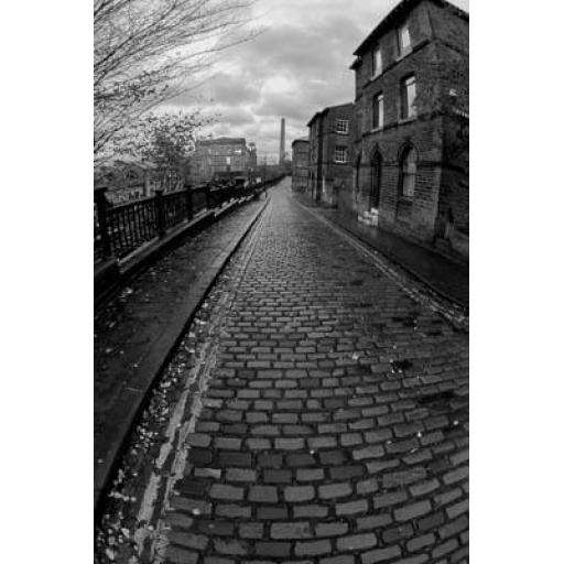 Albert Terrace Fisheye, Saltaire
