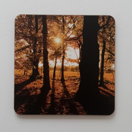 Golden Acre Orange coaster