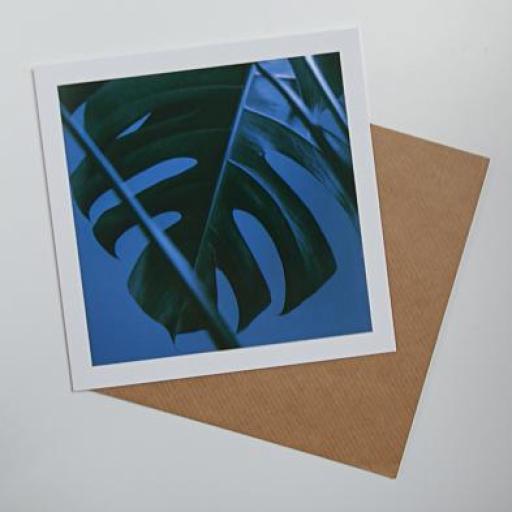 mon-leaf.jpg