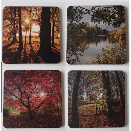Golden Acre park coaster set
