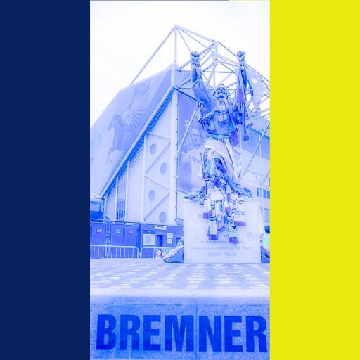 LUFC Bremner Leeds Flag print