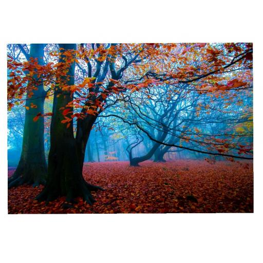 Golden Acre Autumn Mist print