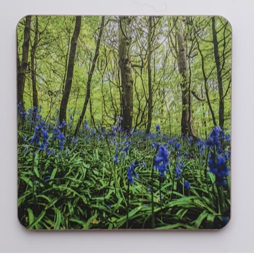Horsforth Bluebell Woods coaster