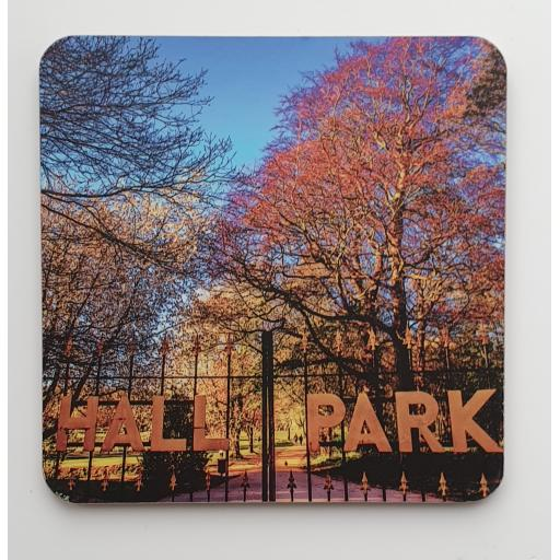 Horsforth Hall Park coaster