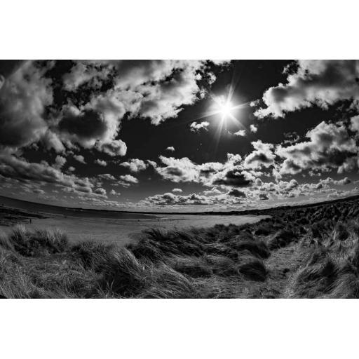 Beadnell Sun print